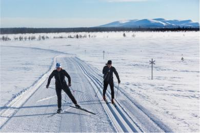 Cross country trails in Lofsdalen